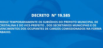 DECRETO  N° 19.585