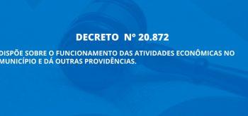 DECRETO N° 20.872